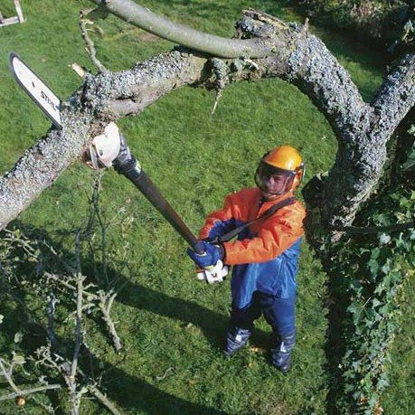 Long Reach Pruning Saw Image 2